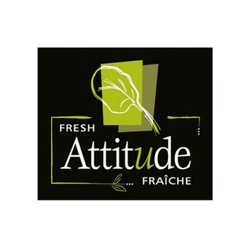 Salade Etcetera! Inc. Logo